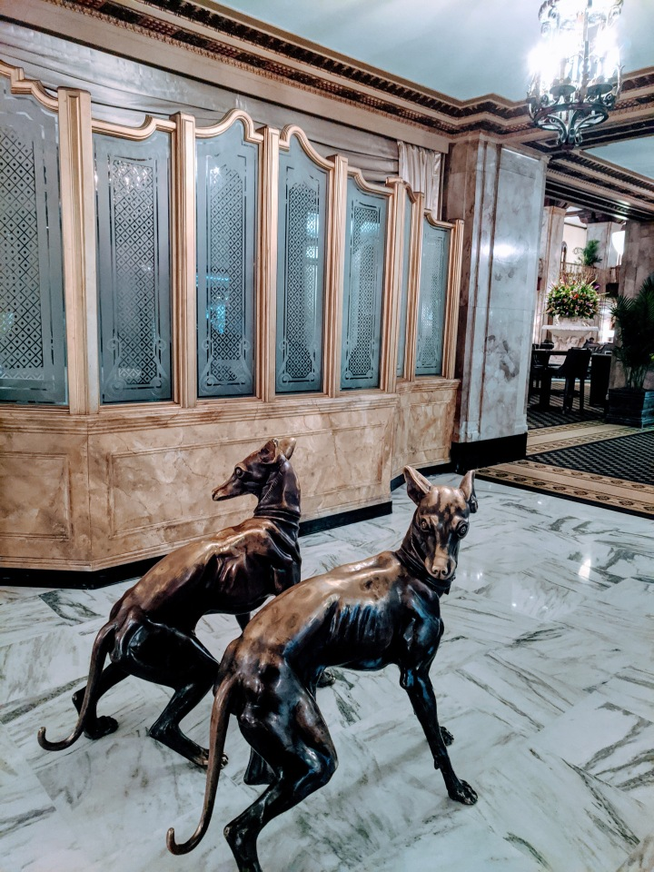 lobbydogs